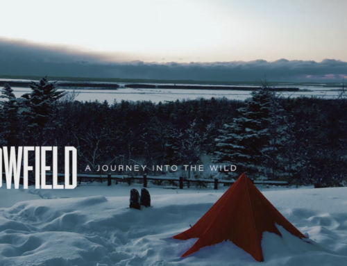THE SNOWFIELD: A JOURNEY INTO THE WILD